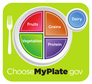 pic of a plate with quadrants sectioned off. fruits, grains, vegetables & protein quadrants. dairy is in the top right corner